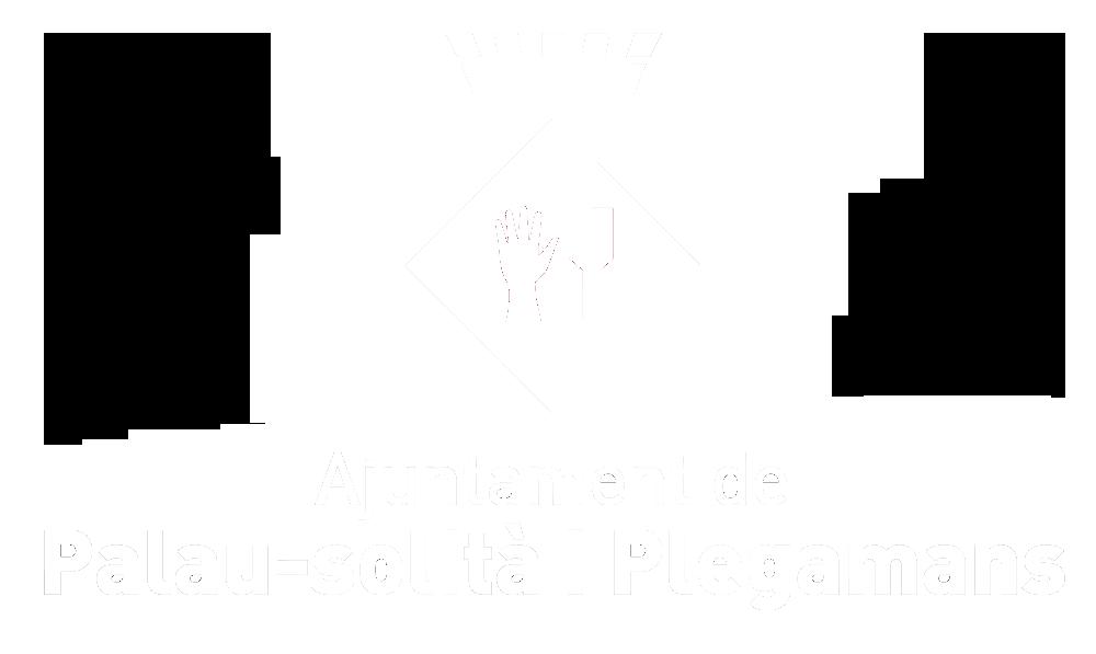 Ajuntament Palau